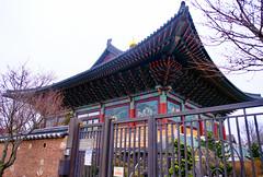364/366 NYC Buddhist Temple