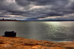 Beauty: Pondering the new year on Lake Grapevine