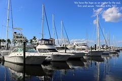 Twin Dolphin Marina, Bradenton, Manatee County, Florida