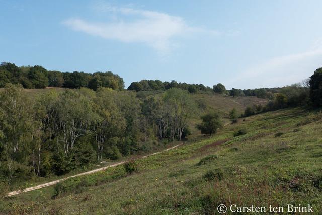 Photo:Box Hill By 10b travelling / Carsten ten Brink