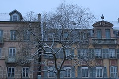 Fractale_d'hiver