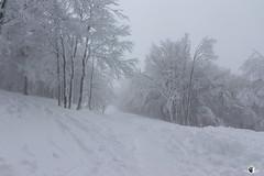Col de Falimont