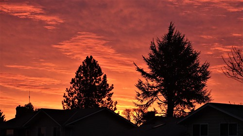 DSC06117 (2) Sunrise