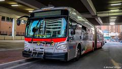 WMATA Metrobus 2015 New Flyer Xcelsior XDE60 #5466