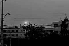 Vistas de barrio.