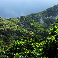 Parc National de la Guadeloupe, France
