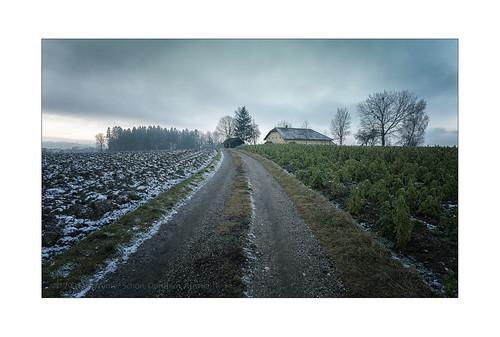 Upper Austrian Countryside