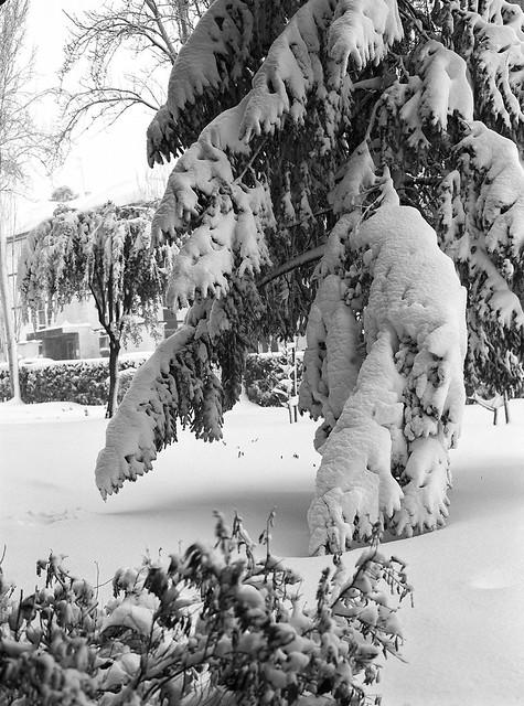 Photo:La gran nevada en Madrid. (papel) By fcuencadiaz