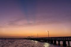Ballast Point Pier Colors