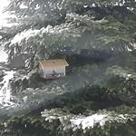 Vogelhaus mit Hausperling