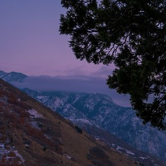 Sunset Along Mount Olympus Trail