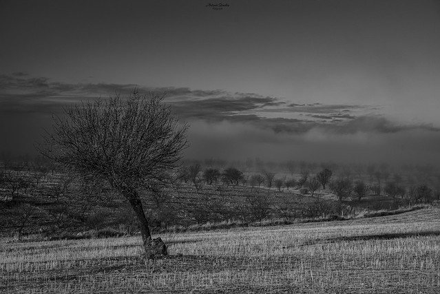 Niebla matutina en Gor, Granada.