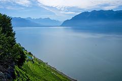 Et au loin toujours le Mont Blanc