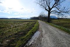 Chemin du Chambert @ Choulex