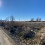 Panorámicas de la nieve en las Lagunas de La Guardia (Toledo) 13-1-2021