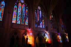 Multicolored Cathedral