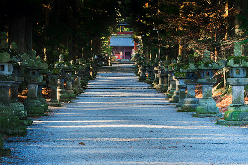 Long Path to Shrine