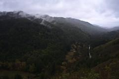 Pfeifer Big Sur