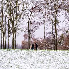 Faisait froid - Photo of Soisy-sur-Seine