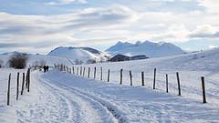 Vers la vallée - plateau du Bénou sous la neige