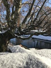 Strasbourg sous la neige 2021