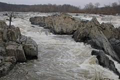 Great Falls, Virginia, December 28, 2012
