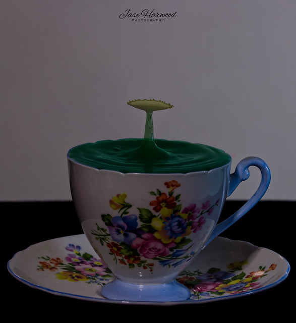 Sprouting from a tea cup