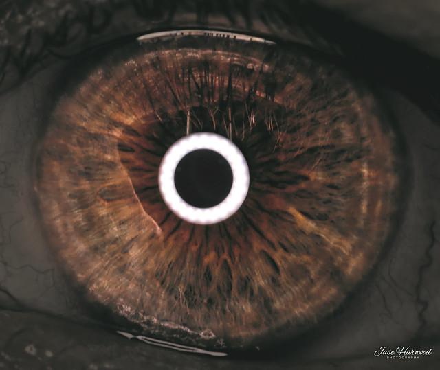 It's all in the eye