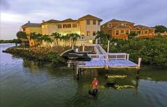 Man/Dog Walking/Swimming/Flying Tampa Bay Florida Home Drone Selfie - IMRAN™