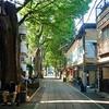 Photo:Approach road to #Kishibojin #鬼子母神 #Hariti #귀자모신 #雑司ヶ谷 #Zoshigaya #参道 #日本 #東京都 #東京 #豊島区 #Tokyo #Japan #Toshimaku #ivvaDOTinfo #ivva By ivva