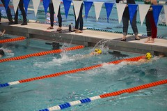 Violet In The 25-Meter Freestyle