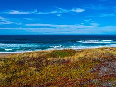Point Reyes National Seashore Fine Art Fuji GFX100 Landscape Photography Ocean Art Seascape! Dr. Elliot McGucken Master Medium Format Landscape Nature Photography Fuji GFX 100 & FUJINON FUJIFILM GF Lens
