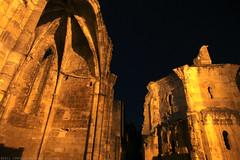 FR11 5914 L'abbaye bénédictine Notre-Dame d'Alet (Xe siècle). Alet-les-Bains, Aude - Photo of La Digne-d'Amont