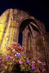 FR11 5908 L'abbaye bénédictine Notre-Dame d'Alet (Xe siècle). Alet-les-Bains, Aude