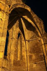 FR11 5917 L'abbaye bénédictine Notre-Dame d'Alet (Xe siècle). Alet-les-Bains, Aude - Photo of La Digne-d'Amont