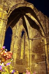 FR11 5905 L'abbaye bénédictine Notre-Dame d'Alet (Xe siècle). Alet-les-Bains, Aude - Photo of La Digne-d'Amont