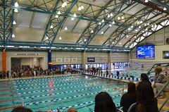 CYO Swim Championships