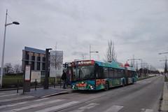 Solaris Urbino 18 IV n°704  -  Strasbourg, CTS