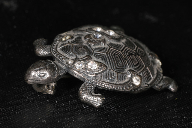 Photo:23/365 Turtle Brooch By Judy Gallagher