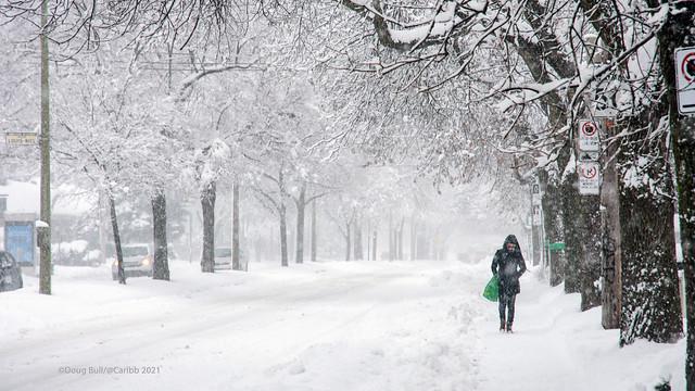 Photo:January Blizzard By caribb