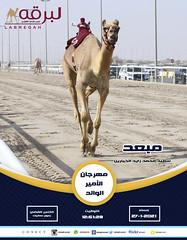 السباق الختامي حيل وزمول (أشواط عامة) مهرجان الأمير الوالد ٢٧-١-٢٠٢١