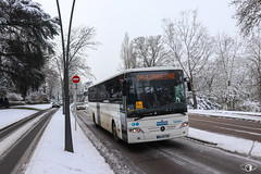 Fluo Grand Est 57 / Mercedes-Benz Intouro M n°113175 - Keolis 3 Frontières - Photo of Plappeville
