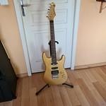 sitar guitar