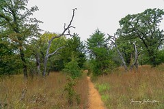 Hiking the Narrows Trail at the Wichita Mountains National Wildlife Refuge