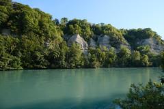 Rhône @ Teppes de Verbois @ Russin