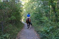 Équitation @ Teppes de Verbois @ Russin