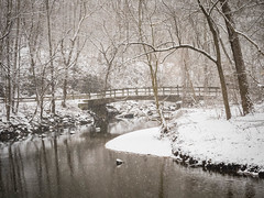 Snow and a Bridge over Rock Creek