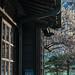 台北・逸仙公園 / Sun Yat Sen Memorial House   ∣ Taipei City