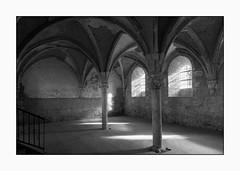 3707 Ancienne abbaye de l'Étoile, à Archigny (Vienne)