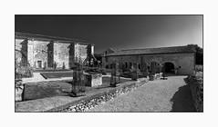 3710 Ancienne abbaye de l'Étoile, à Archigny (Vienne)